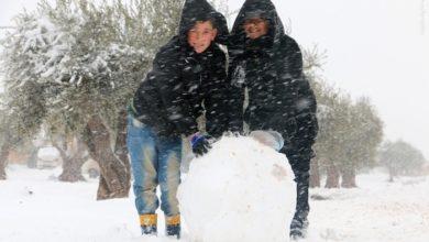 تصویر از انواع ورزش های زمستانی در ایران چه می دانید؟