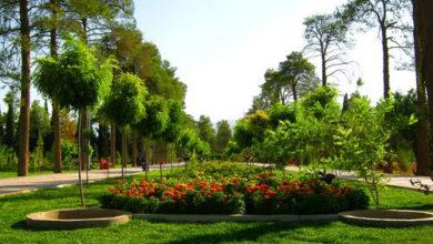 تصویر باغ جنت
