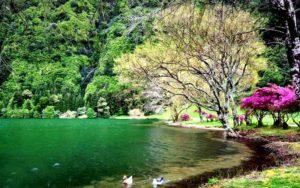 دریاچه شور مست سواد کوه،