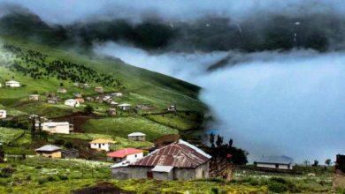 تصویر از سفر به گیلان