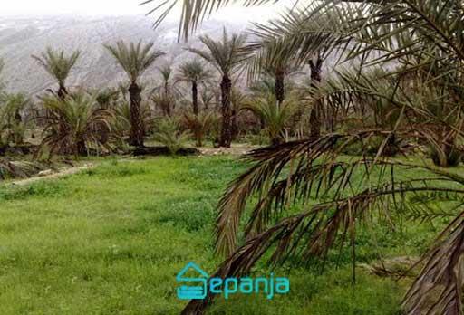روستای خورگو کجاست