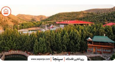 تصویر از راهنمای سفر به مشهد، پایتخت معنوی ایران
