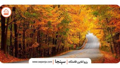 تصویر از راهنمای سفر به گرگان، پایتخت جگرکیهای ایران