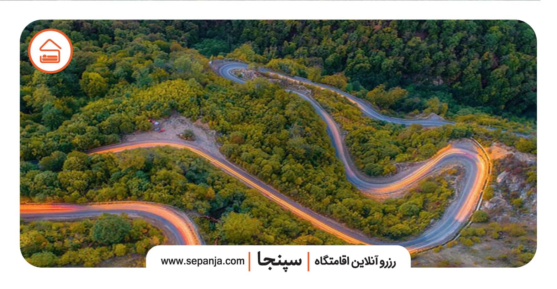 نمایی از جنگل های توسکتان در استان گلستان