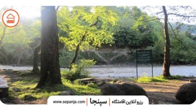 تصویر از پارک جنگلی فین چالوس، سرسبزترین پارک شمال ایران