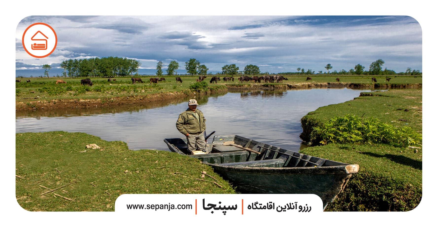 تالاب انزلی در استان گیلان