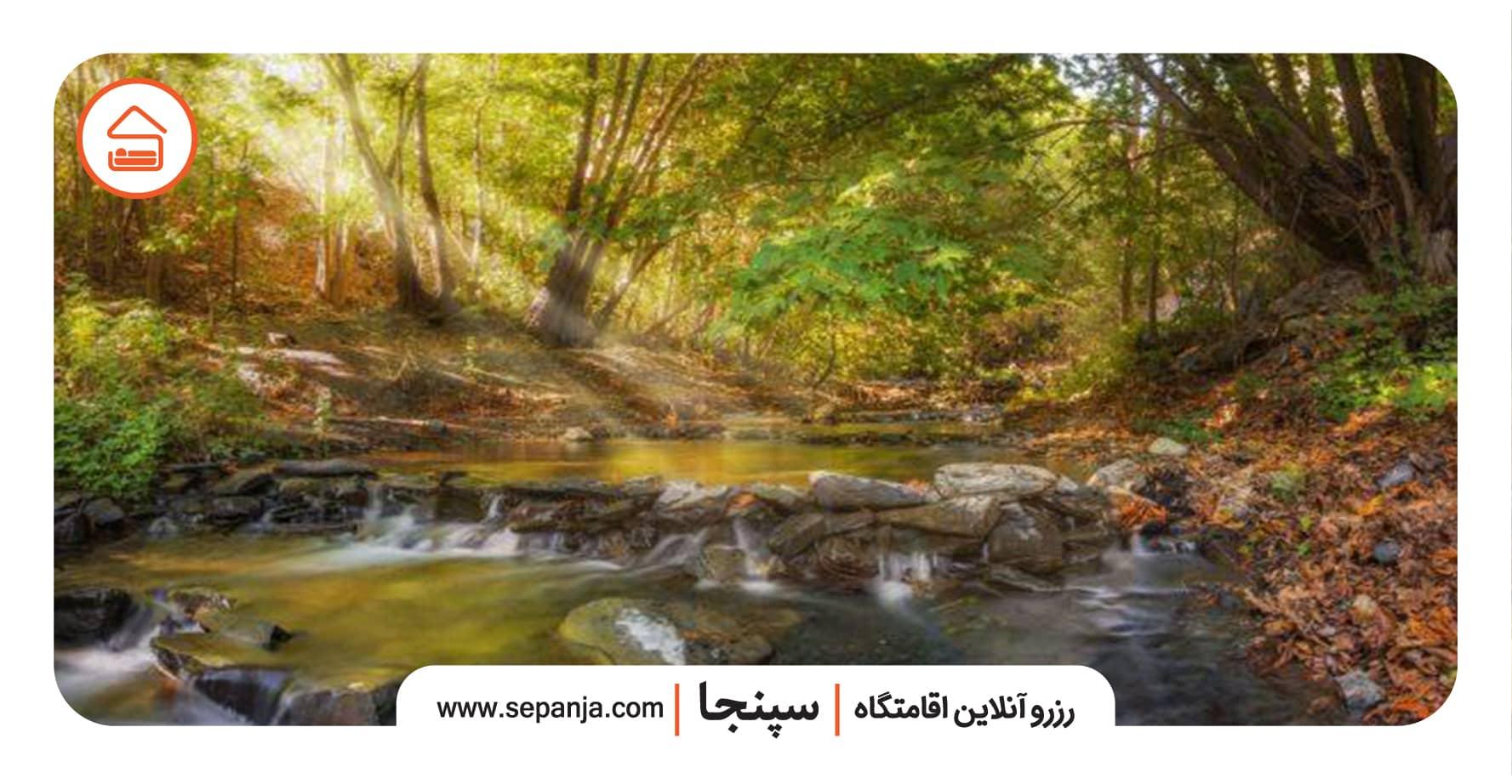 نمایی از جاغرق در مشهد