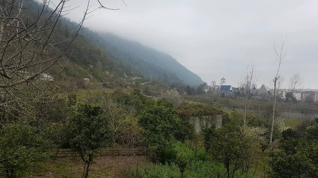 Forest ویلا جنگلی در هچیرود مازندران