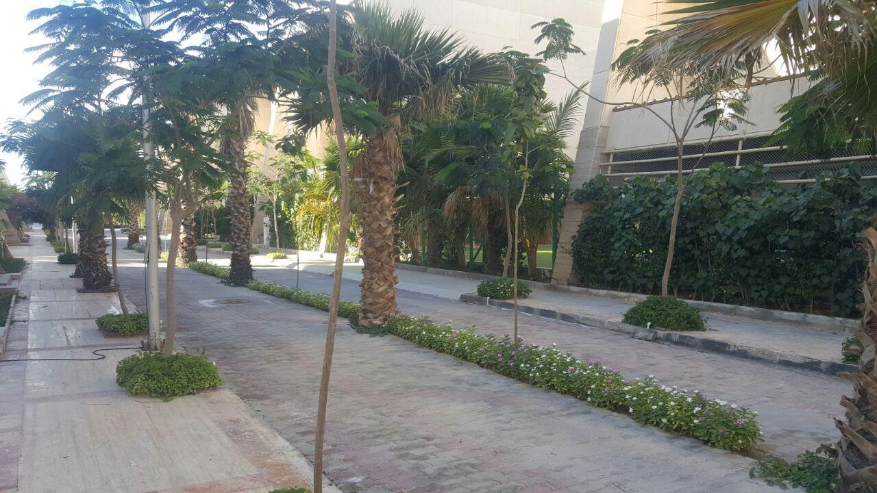 ساحلی آپارتمان ساحلی در ساحل مرجان کیش