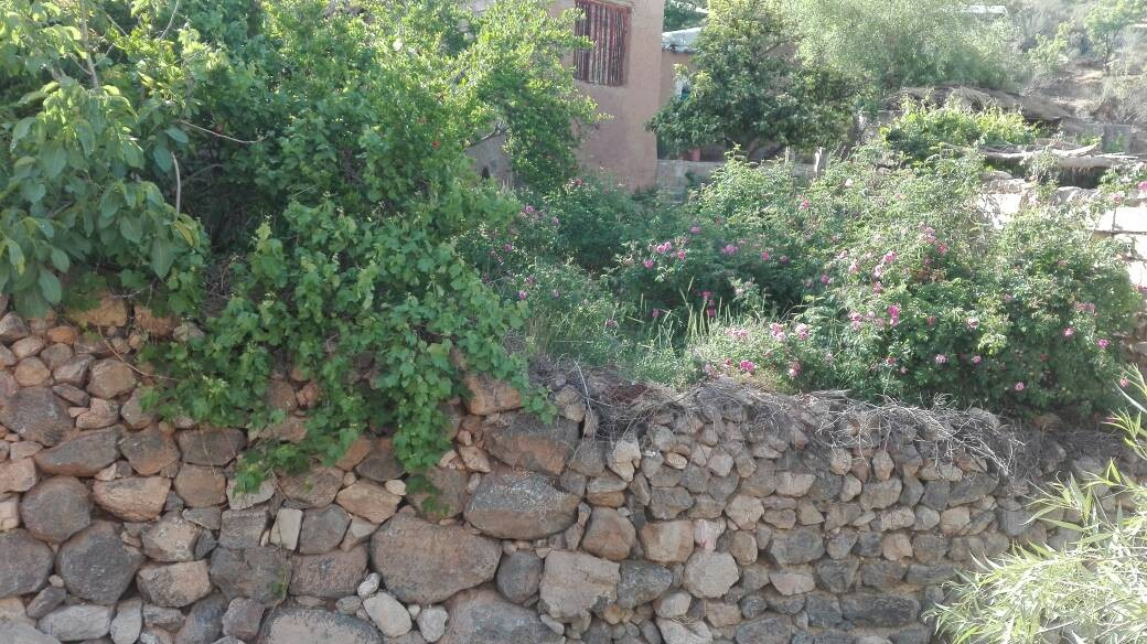 بوم گردی هتل بومگردی در داراب-کوهستان8