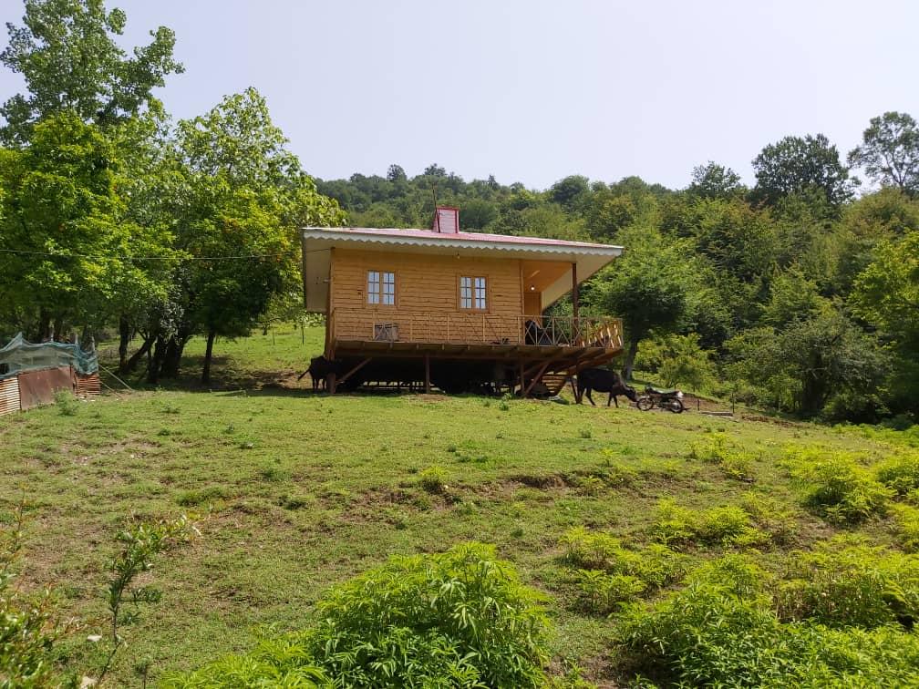 Forest کلبه چوبی جنگلی در ییلاقات ماسال