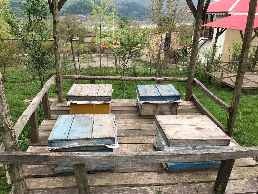 جنگلی کلبه چوبی جنگلی در کندلات رودبار