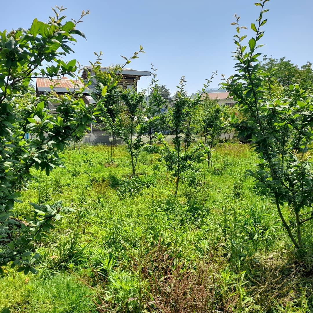 روستایی باغ ویلا در وشمه سرا ماسال