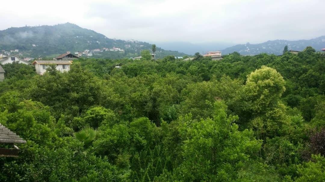 جنگلی باغ و ویلا در خیابان میرزا کوچک خان جنگلی