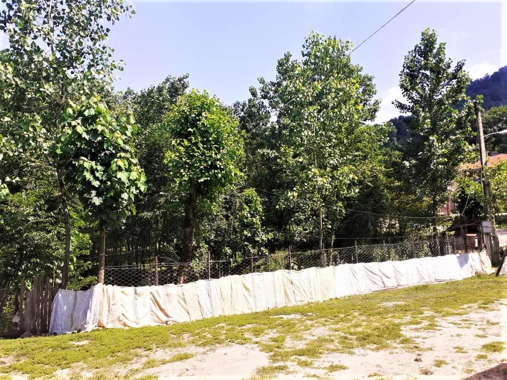 روستایی ویلا جنگلی در طاسکوه ماسال - گیلان