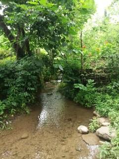 روستایی ویلا جنگلی در اولم ماسال