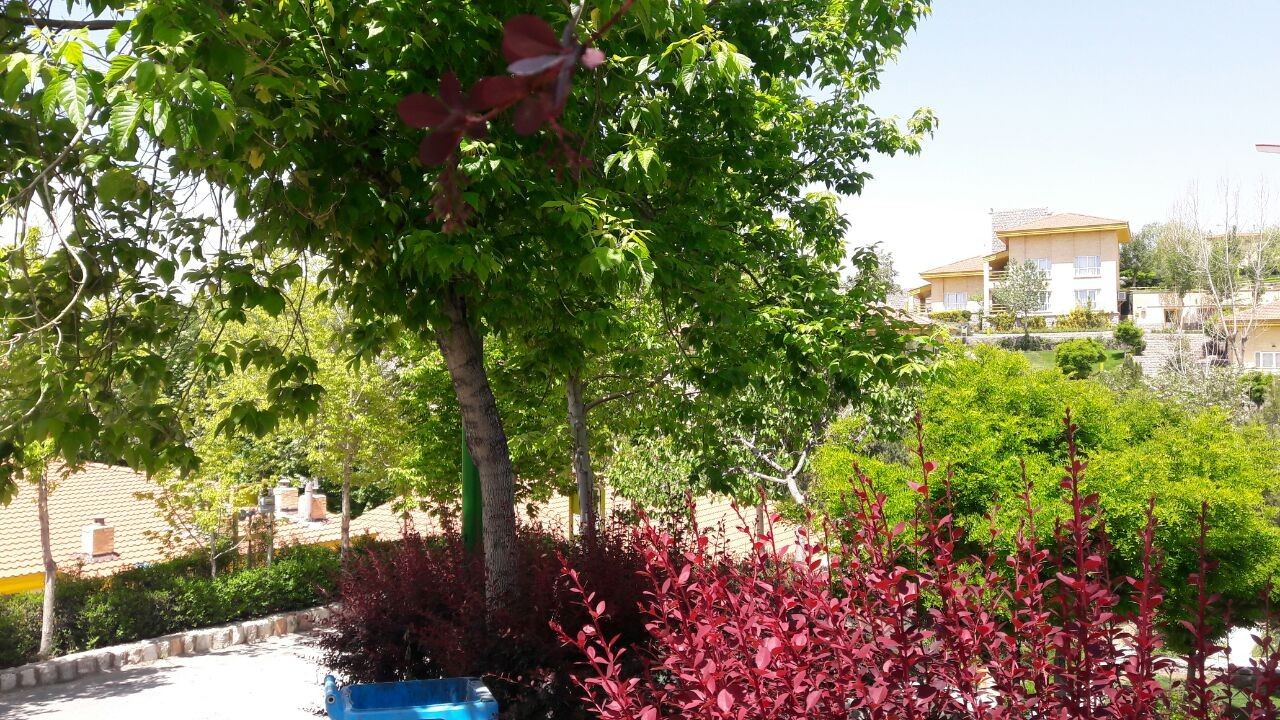 ساحلی باغ و ویلا شیک در چادگان اصفهان - واحد 5