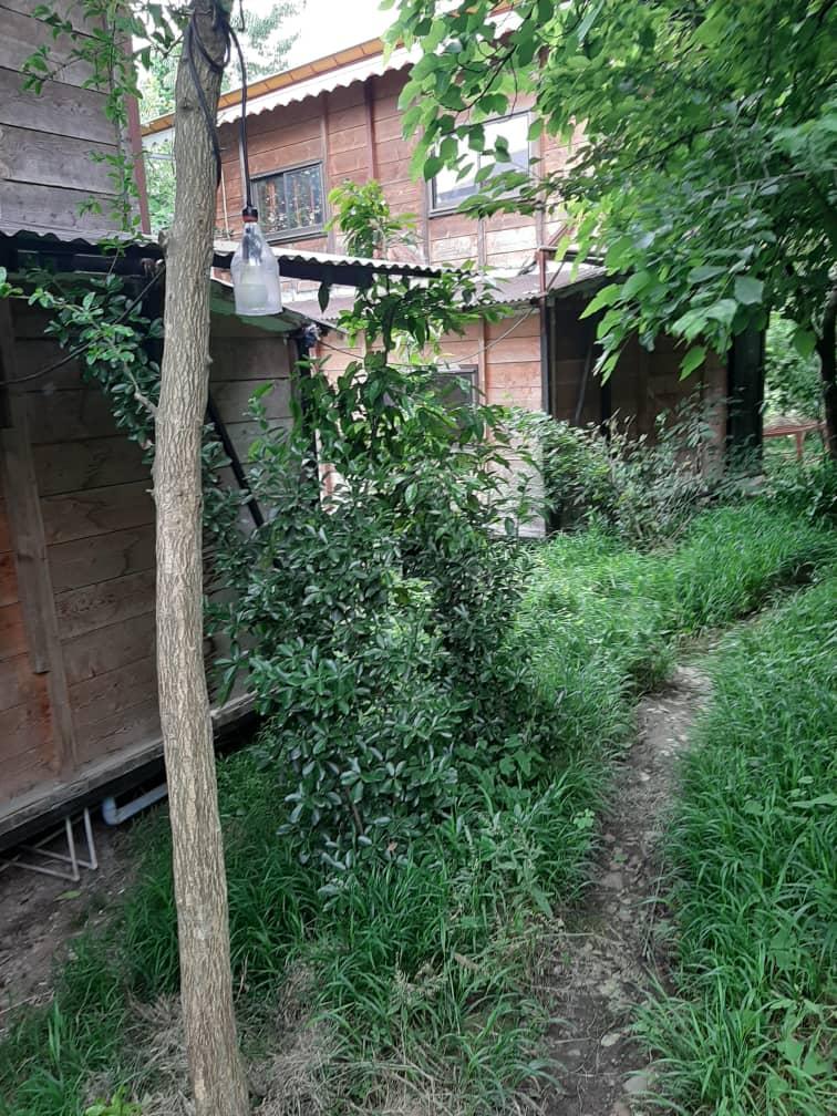 درون شهری کلبه چوبی تمیز درماسال