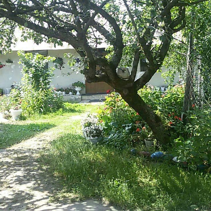 Eco-tourism خانه مبله ارزان در ماسال
