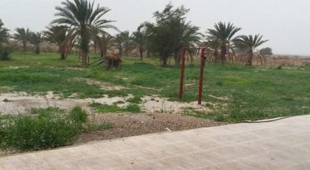 بوم گردی بومگردی سنتی ارزان بوشهر
