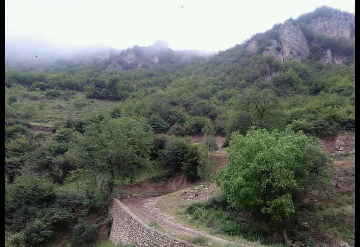 جنگلی خانه جنگلی در زیارت گرگان - 3