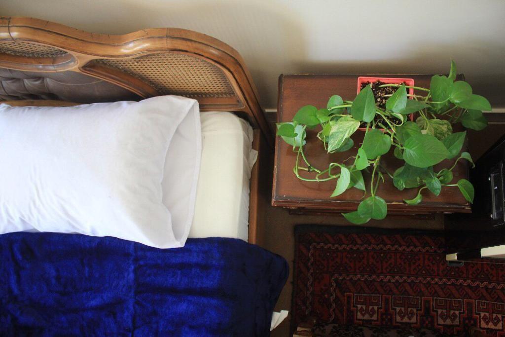 townee اتاق یک تخته در بزرگمهر اصفهان