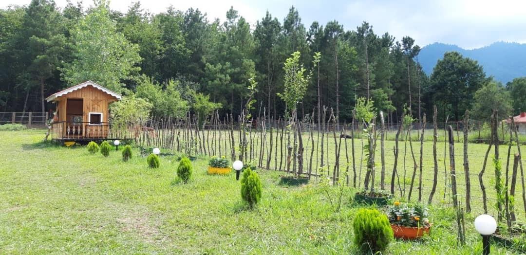 Forest ویلا جنگلی در ماسال