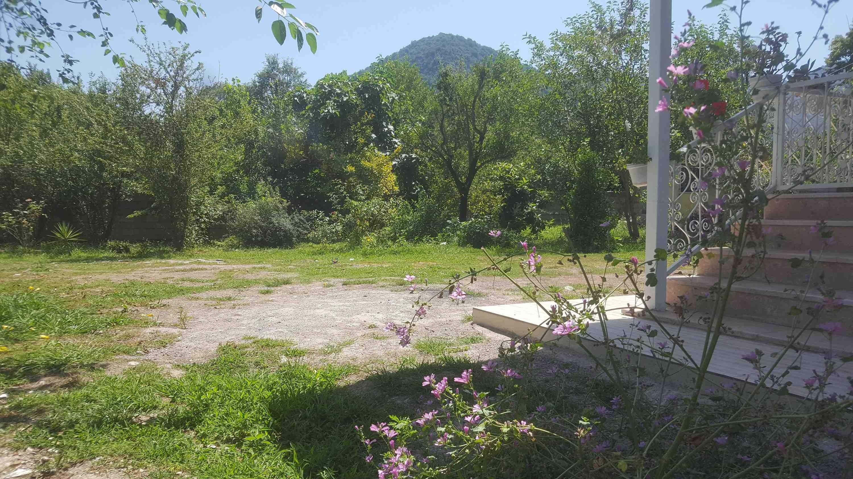 جنگلی باغ و ویلا در ماسال