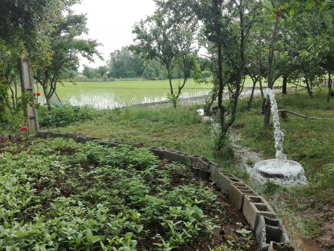 روستایی  ویلا در وردوم ماسال