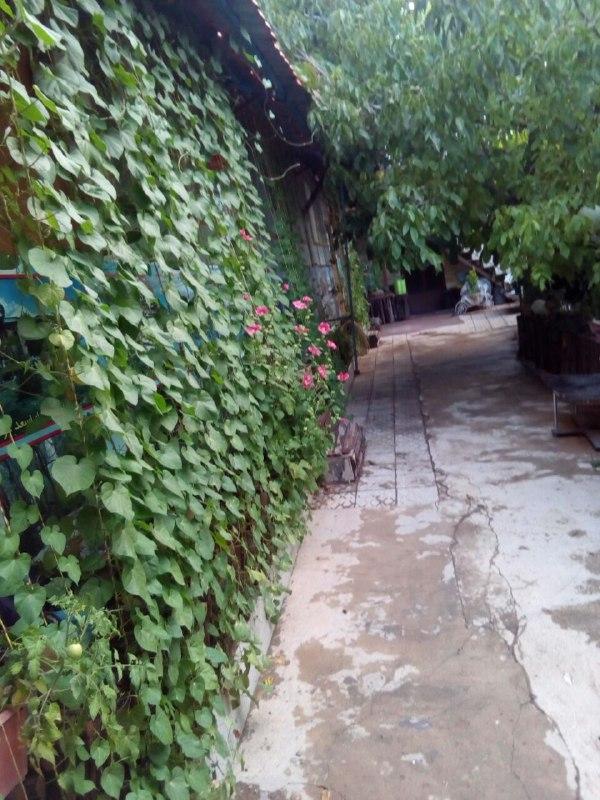 اقامتگاه بومگردی باباحیدر اتاق 1