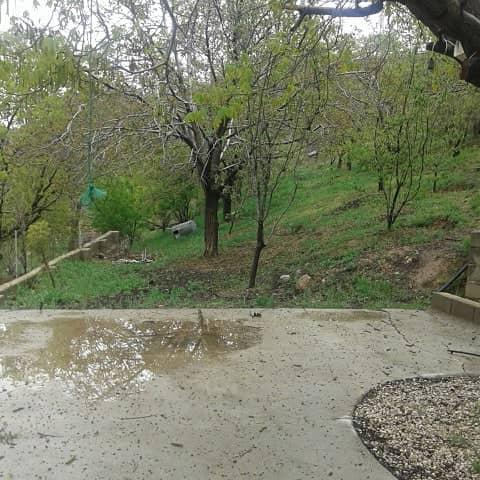 باغ رویا