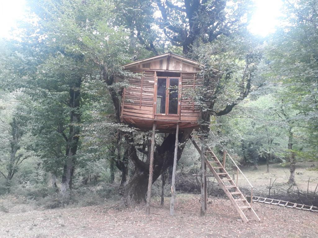 کلبه چوبی مرکیه 2