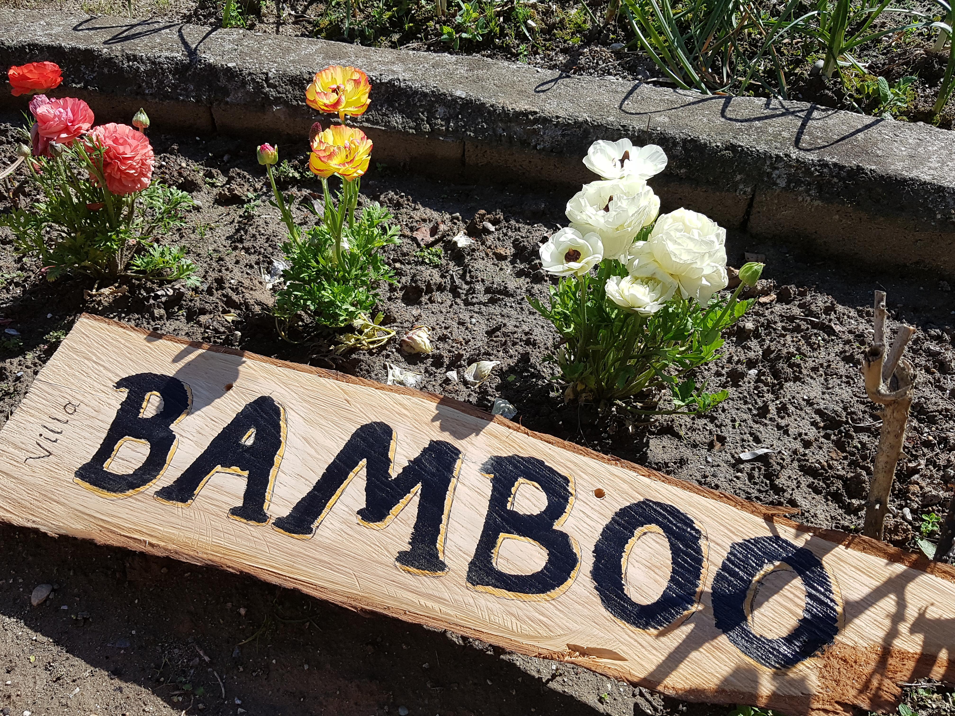 ویلای بامبو Bamboo Villa