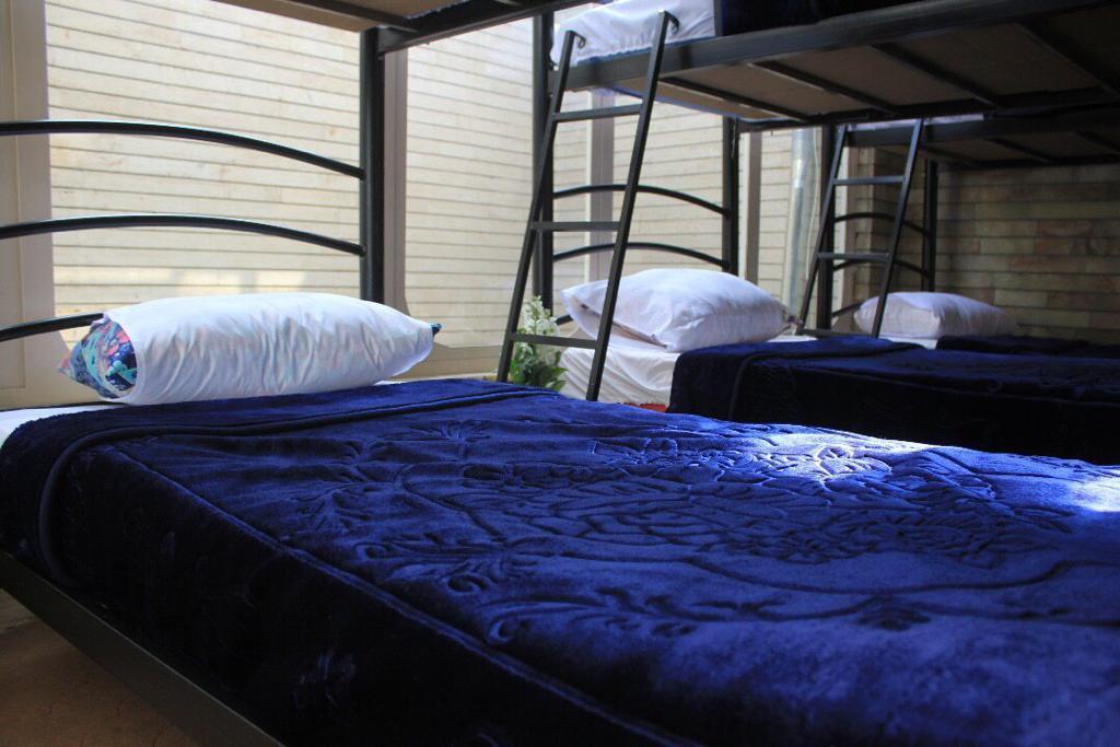اتاق ده تخته پاواهاستل