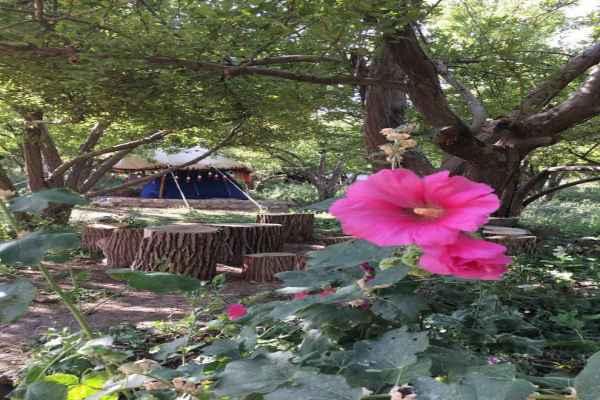 اقامتگاه بوم کلبه کهکران 2