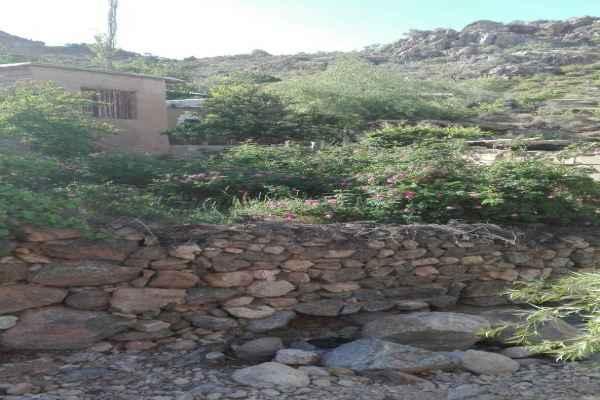 اقامتگاه بابا حسین کوهستان6