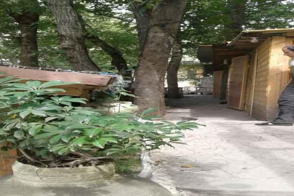 اقامتگاه تاکایا آلاچیق7