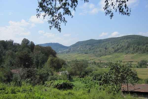 ویلای جنگلی در سوادکوه
